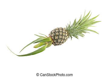 Whole single pineapple on white background.