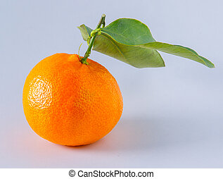 whole tangerine on the white background