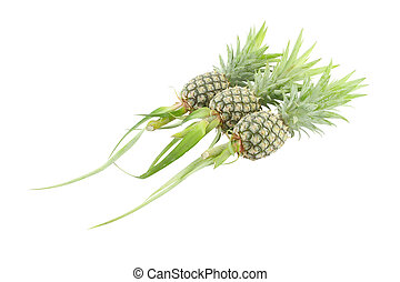 Whole three pineapple on white background.