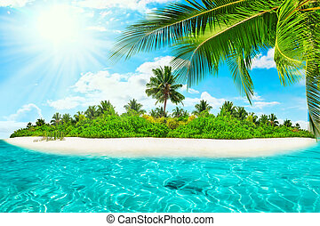 Whole tropical island within atoll in tropical Ocean on a...