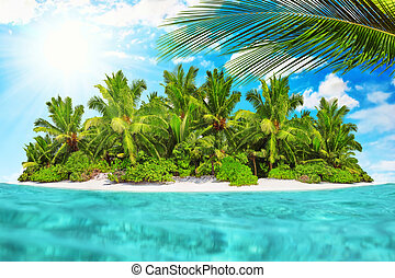 Whole tropical island within atoll in tropical Ocean on a summer day