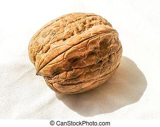 Whole walnut - Close up of whole walnut on white background.