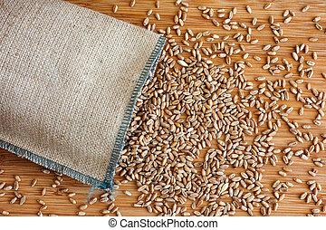 Whole wheat grain kernels spilling out of burlap bag