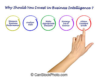 Why Should You Invest in Business Intelligence