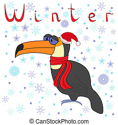 Why Toucan is so cold in winter?