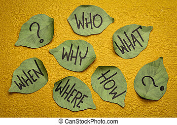 why, who, what, when, where, how brainstorming questions