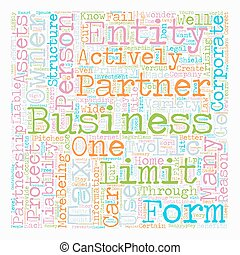 Why You Need A Business Entity text background wordcloud...