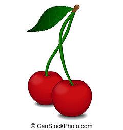 wiśnia, jagody, dojrzały, czerwony