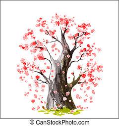 wiśniowe drzewo, japończyk, rozkwiecony
