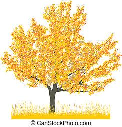 wiśniowe drzewo, w, jesień