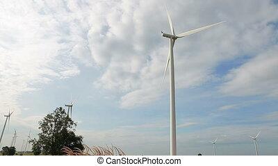 wiatr, czysty, odnawialny, moc, energia