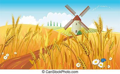 wiatrak, rolny krajobraz