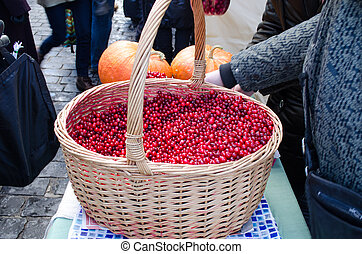 wicker basket full of cranberry mossberry bog-berry sold in outdoor street spring market. healthy diet ecologic nutrition.