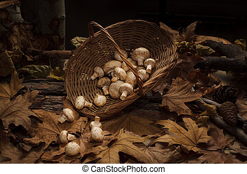 Wicker basket full of mushrooms