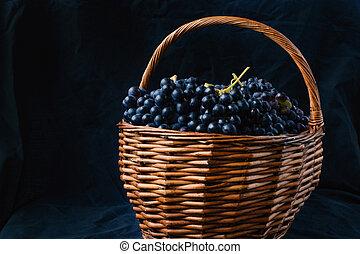 Wicker basket full of Tempranillo grapes