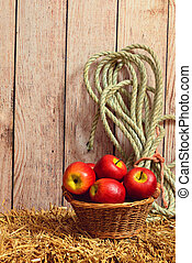 wicker basket of apples on hay with rope
