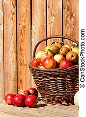 Wicker basket with apples and pears. Autumn harvest of fruit. Fresh fruit in a basket.