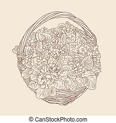 wicker basket with flowers vector drawing