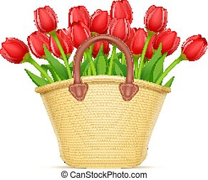 Wicker basket with tulip flower bouquet. Vector illustration.