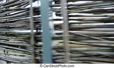 Wicker fence - Camera on steadicam by fence of twigs