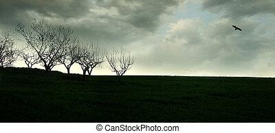Wide Angle Landscape in Backlight