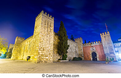 Wide angle shot view of Alcazar in evening. Seville