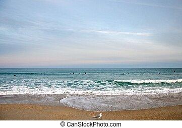 Wide Beach View