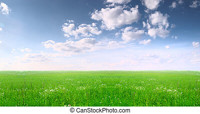 Wide field and blue sky