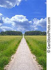 Wide Open Gravel Path
