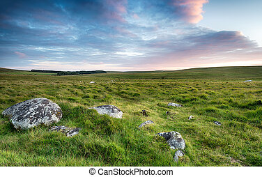 Wide Open Space on Bodmin Moor - Grassy plains and wide open...