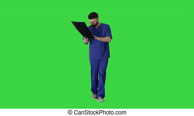 Wide shot. Front view. Surgeon studying mri brain scan while walking on a Green Screen, Chroma Key. Professional shot in 4K resolution. 044. You can use it e.g. in your medical, commercial video, business, presentation, broadcast