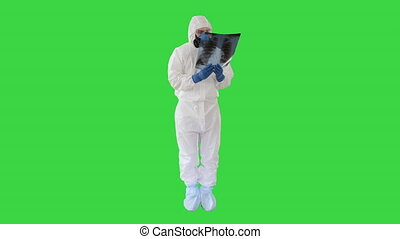 Wide shot. Infectious disease doctor in protective antibacterial suit and medical mask Pulmonologist examines an x-ray of lungs on a Green Screen, Chroma Key. Professional shot in 4K resolution. 53. You can use it e.g. in your medical, commercial video, business, presentation, broadcast