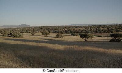 Wide shot of a vast and dry landscape - A wide panning shot...