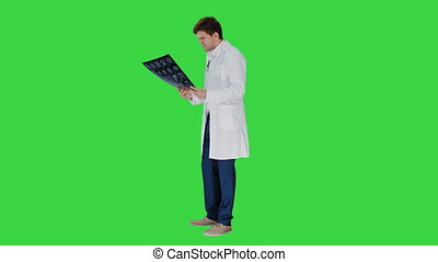 Concentrated male doctor looking at computed tomography xray image on a Green Screen, Chroma Key.