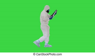 Doctor in protective suit looking at lungs x-ray while walking on a Green Screen, Chroma Key.