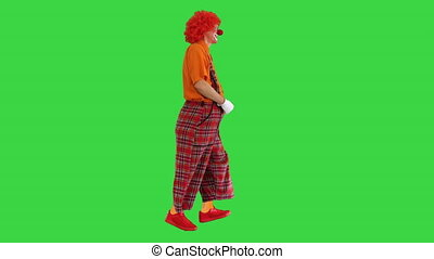 Wide shot. Side view. Funny clown with red hair walking comically on a Green Screen, Chroma Key. Professional shot in 4K resolution. 061. You can use it e.g. in your medical, commercial video, business, presentation, broadcast