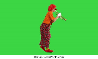 Wide shot. Side view. Walking clown playing the trumpet on a Green Screen, Chroma Key. Professional shot in 4K resolution. 061. You can use it e.g. in your medical, commercial video, business, presentation, broadcast