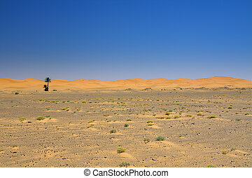 wide view of the edge of the desert