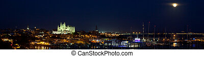Widescreen of Palma de Mallorca and Cathedral by night.
