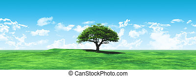 Widescreen tree landscape - 3D render of a widescreen tree...