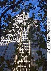 wieża, biuro