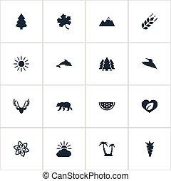 wieżyczka, polarny, komplet, natura, prosty, skrzydło,...