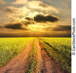 wieczorny, rolny krajobraz, z, niejaki, droga