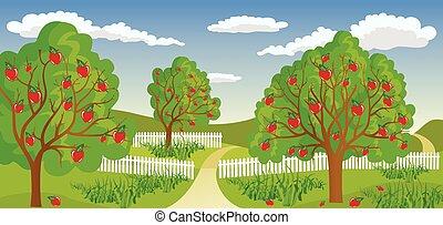 wiejski, drzewo, jabłko, krajobraz