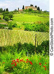 wiejski, krajobrazy, włochy, tuscany, piękny