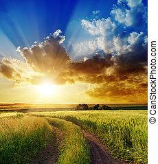 wiejski, na, dobry, zachód słońca, droga