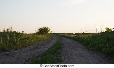wiejski, zaśmiecona droga, pieszy, pole, między, wstecz