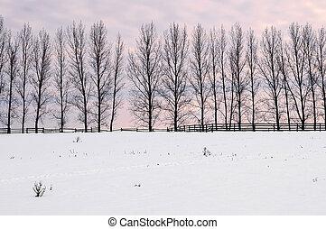 wiejski, zima krajobraz