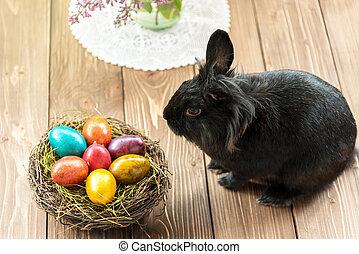 wielkanocny królik, i, wielkanoc, eggs.