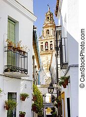 wielki, cordoba, andalusia, meczet, wieża, minaret,...